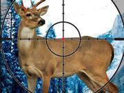 Stag Hunter