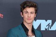 Shawn Mendes 2048