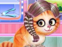 Kitty Salon Hair
