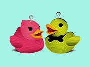 Duck Memory